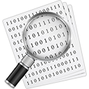 File Details - Hex Editor & File Modifier