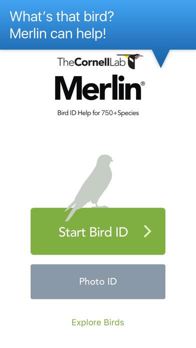 Merlin Bird ID by Cornell Lab of Ornithology Screenshot