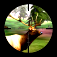 3D Hunting™ Trophy Whitetail Free Icon