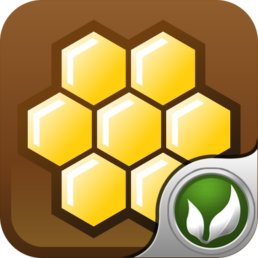 HoneyBear 2