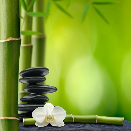 Zen Meditation - Soothing Ambience and Binaural Tones