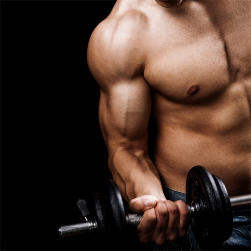 Weight Lifting and Weight Training - Scientifically Founded Weightlifting