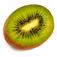 Food Junkie Icon