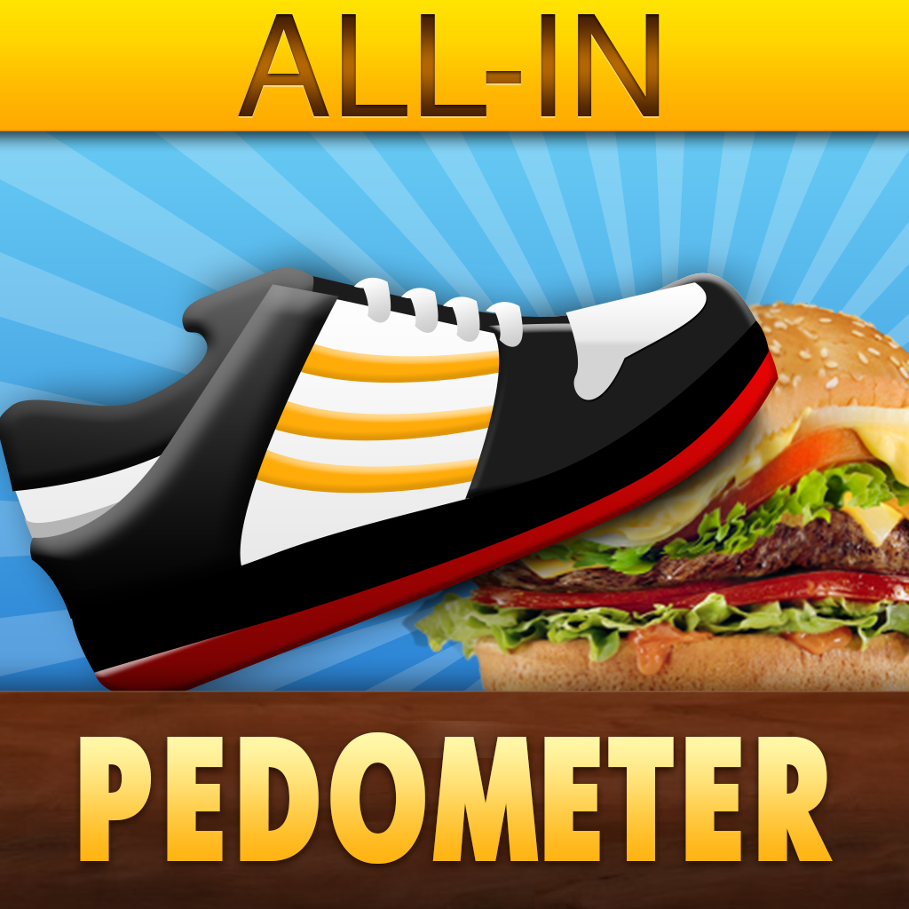 All-in-Pedometer Review