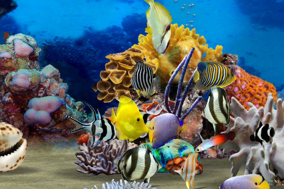 MyReef 3D Aquarium Screenshot