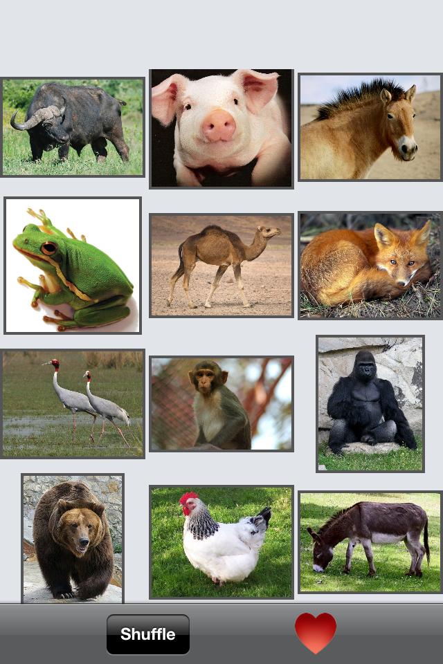 AnimalsCall Screenshot