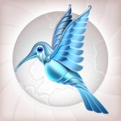 Colibri Web Browser