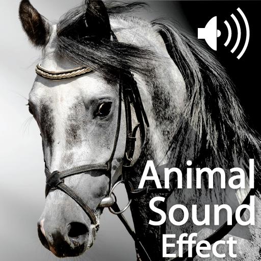 Animals Sounds HD