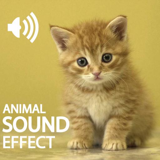 Animals Sound Effect Collection