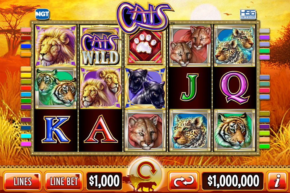 Video Slots Casino Online