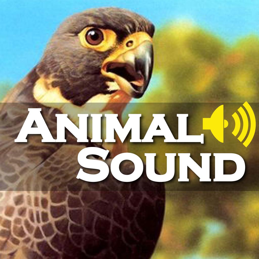 Animal Sounds Professional