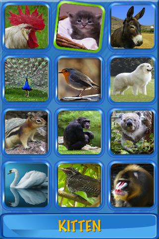 Musical Flash Cards - Animals images sounds and words for