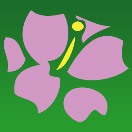 Avas Flowers - Official Mobile Avas Flowers App