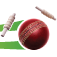 Cricket Companion V4.0 Icon