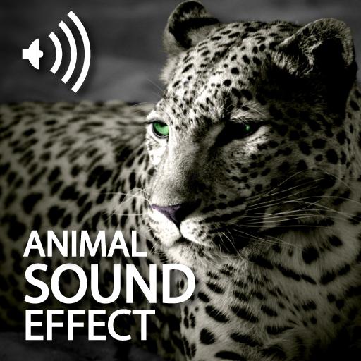 Animals Sound Effect HD