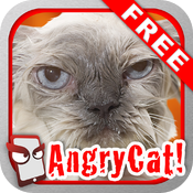 AngryCat Free - The Angry Cat Simulator