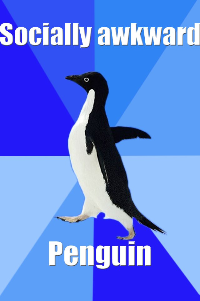 Socially Awkward Penguin Screenshots