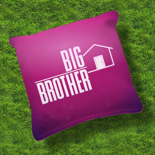 Big Brother Cornhole Game