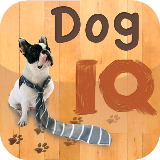 Dog IQ: Intelligence Tests For Dogs