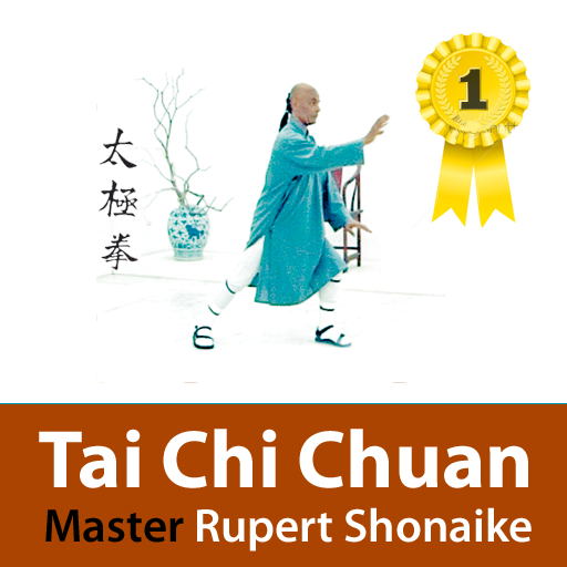 Tai Chi Chuan Pro Edition