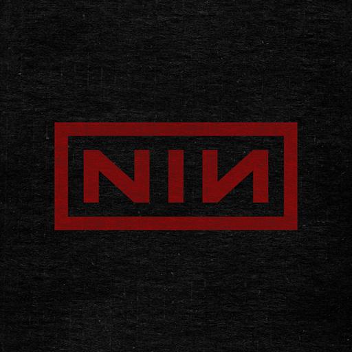 nin: access icon