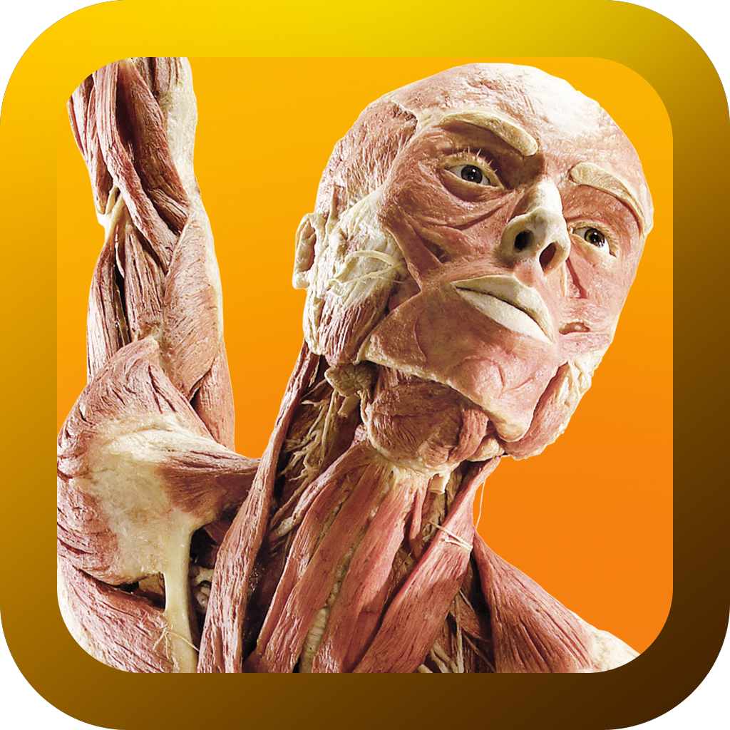 Under Your Skin: The Body Worlds App'