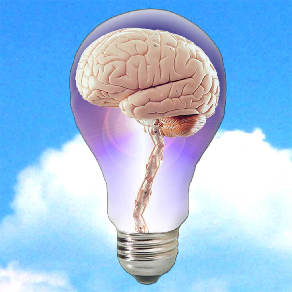 NewsBrain - The Learning News Magazine