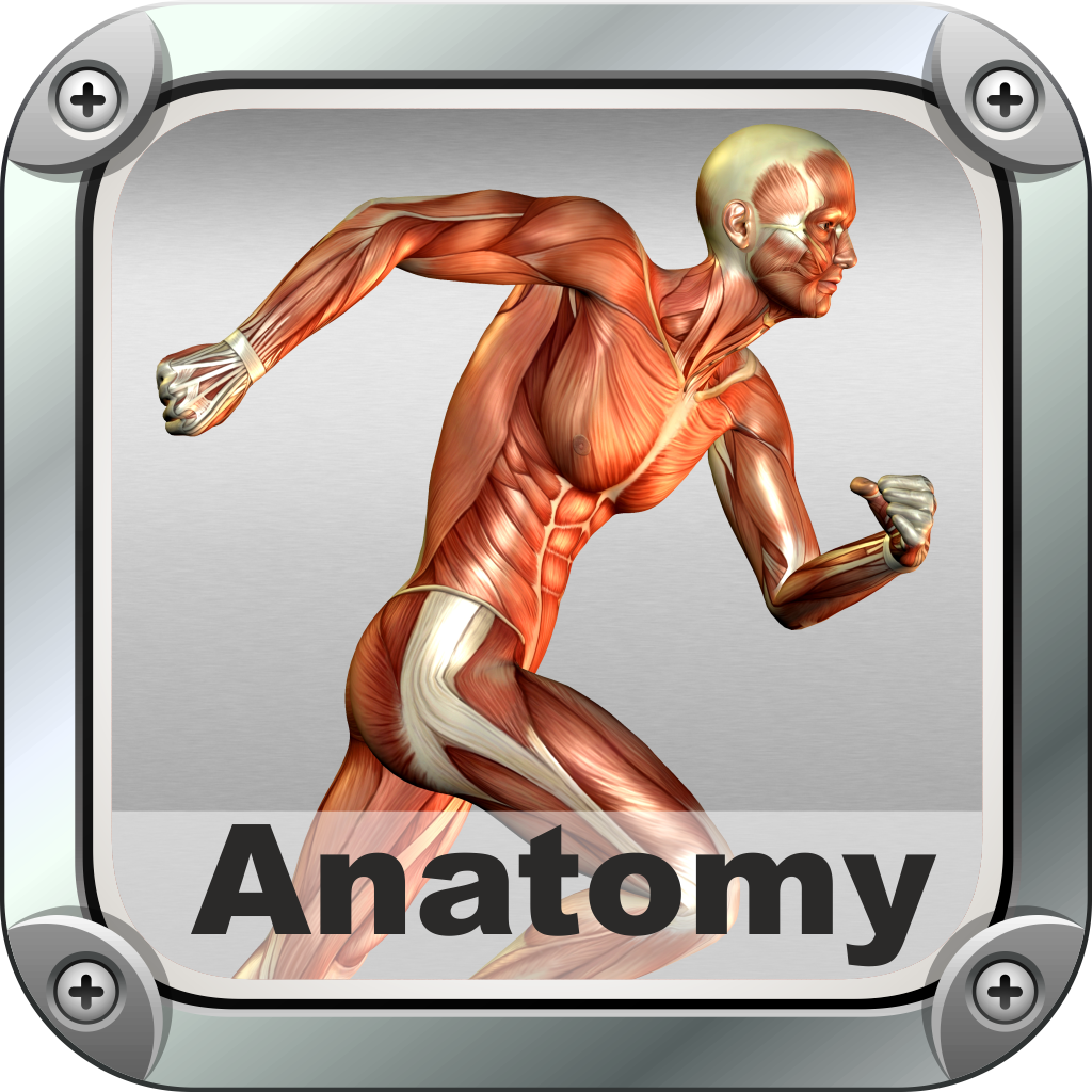Biology Expert : Human Anatomy Quiz