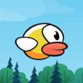 Dodgy Duck Icon