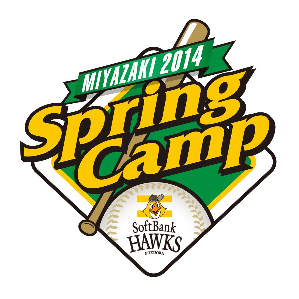 宮崎春季キャンプ2014