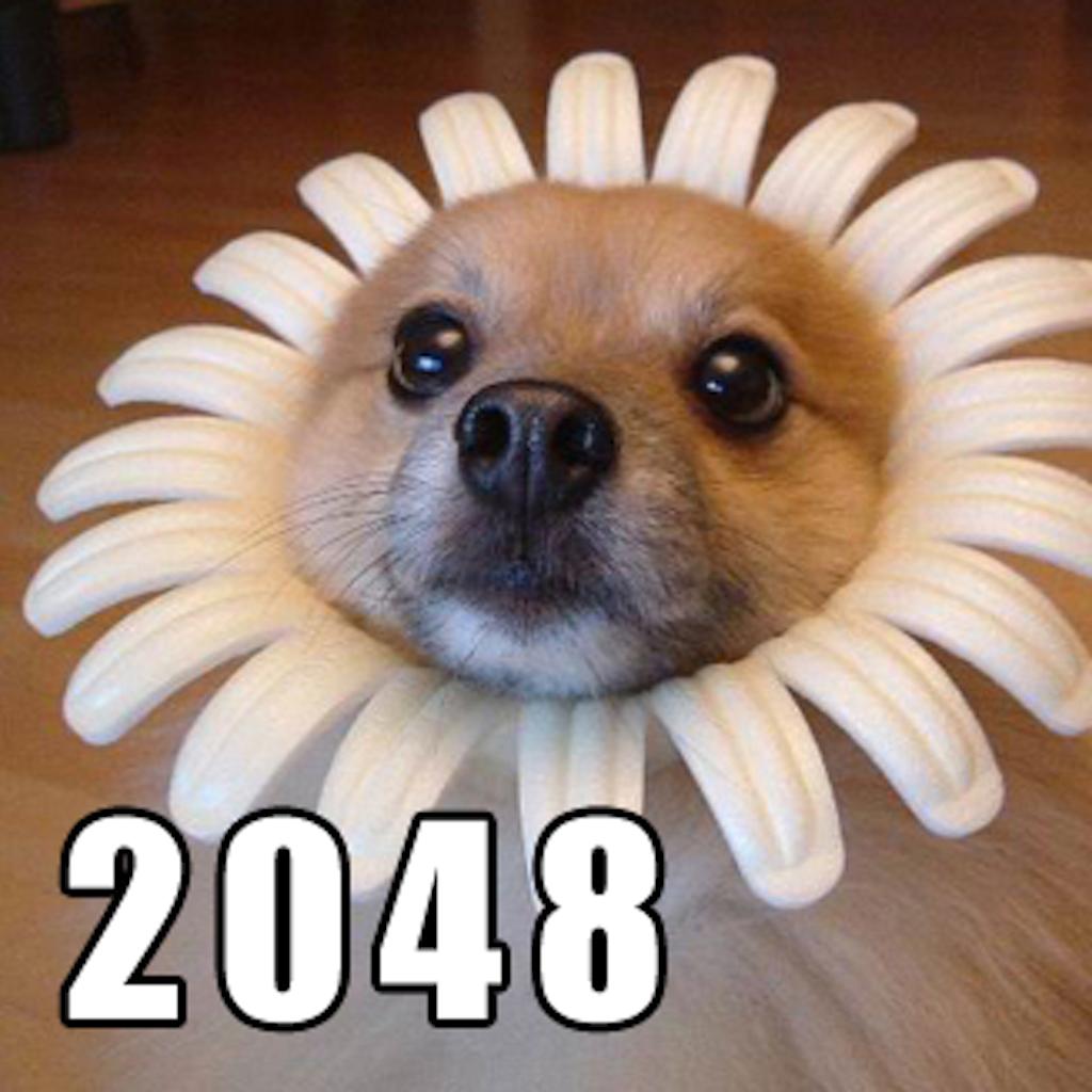 LOL MeMe DoG !! Puzzle : 2048 Mathematics Games 9gag funny meme version