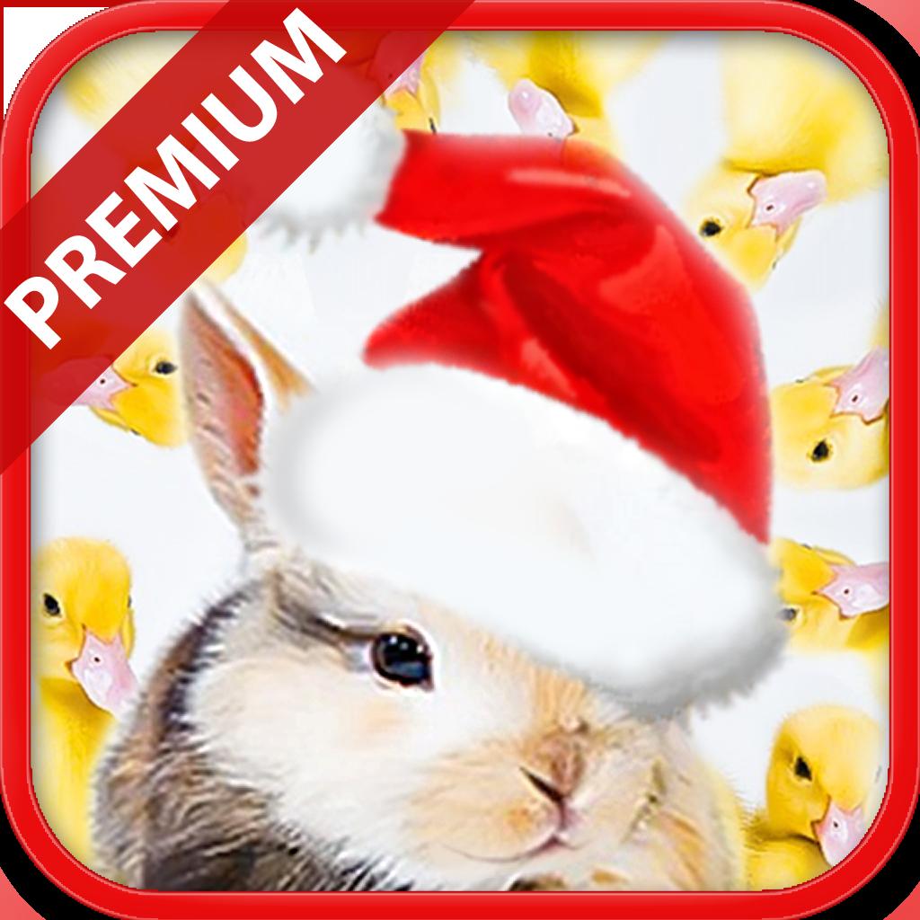 What Doesn't Belong? Christmas Premium - Educational Brain Teaser Game for Kids