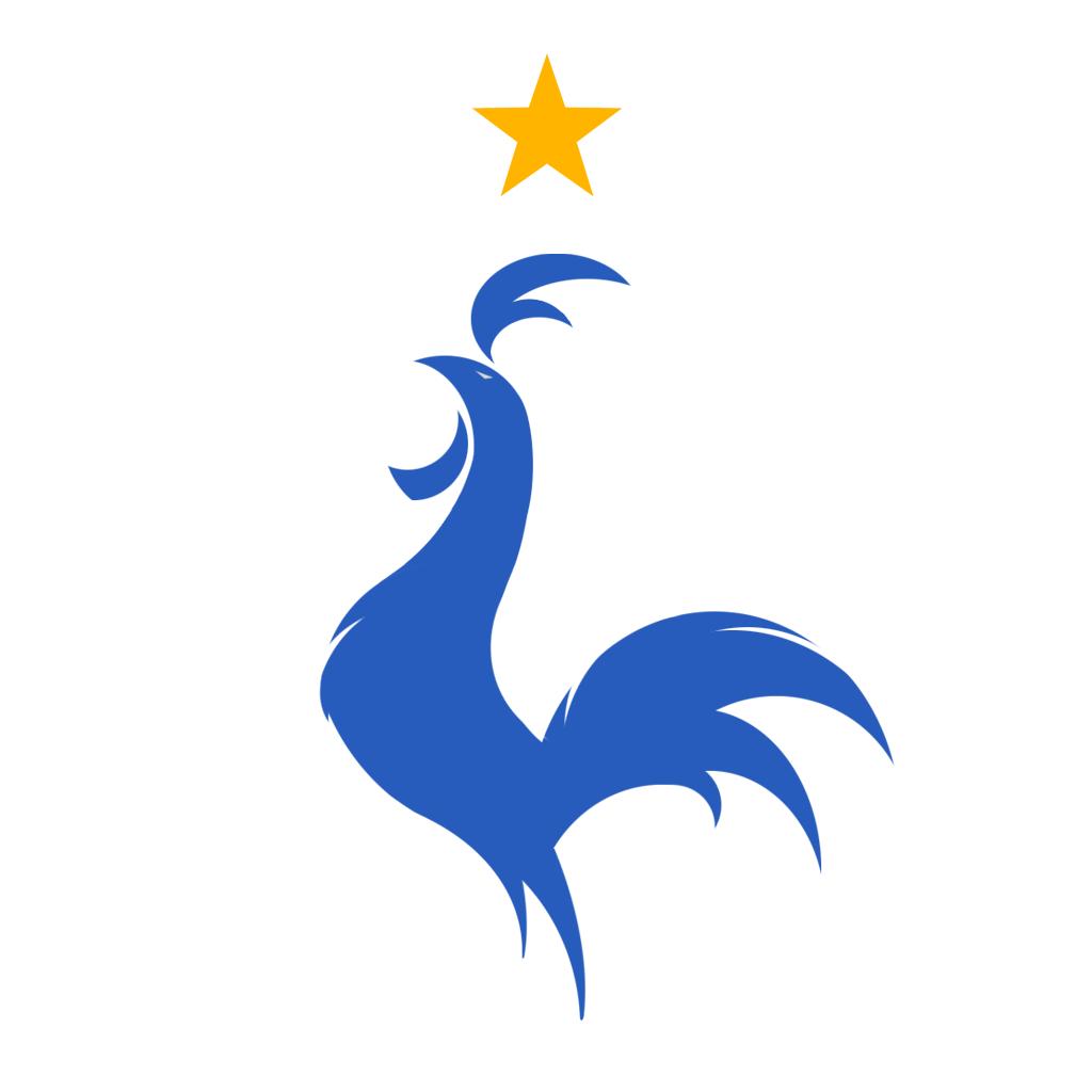 Brésil - Les Bleus (Premium)