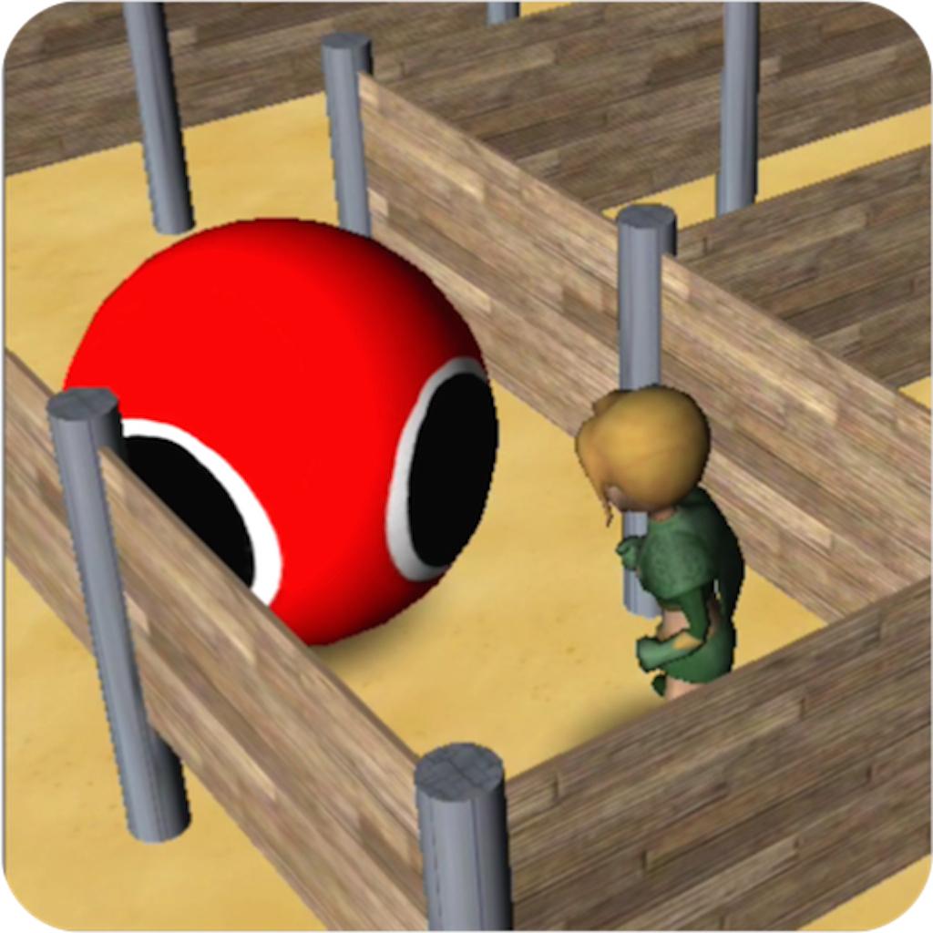 3D Maze Robo