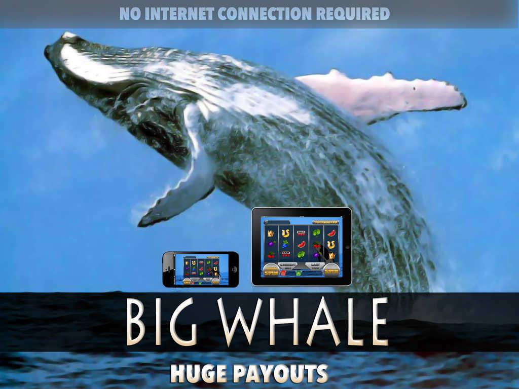 Whale Gambler