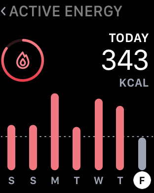 FitPort - Fitness Dashboard for Apple Health app Screenshot