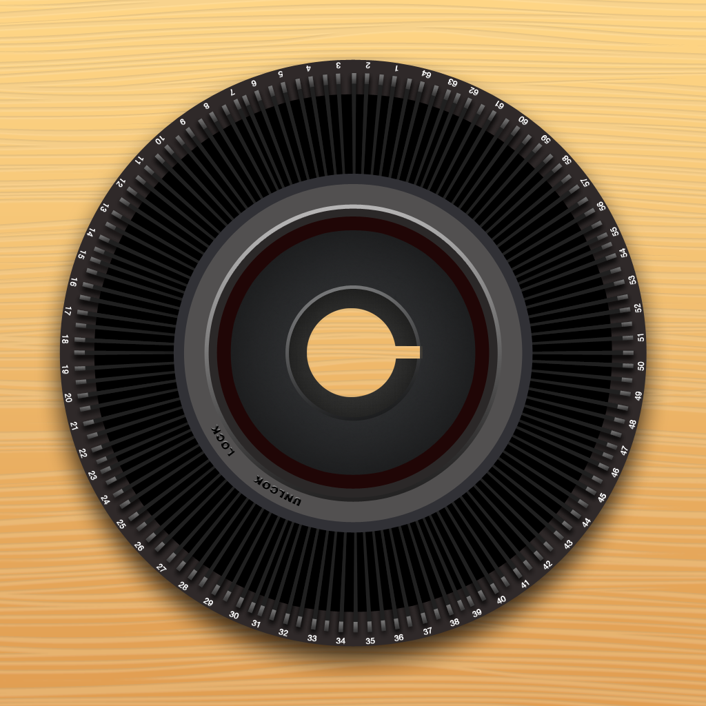 Carogram - Instagram for the iPad