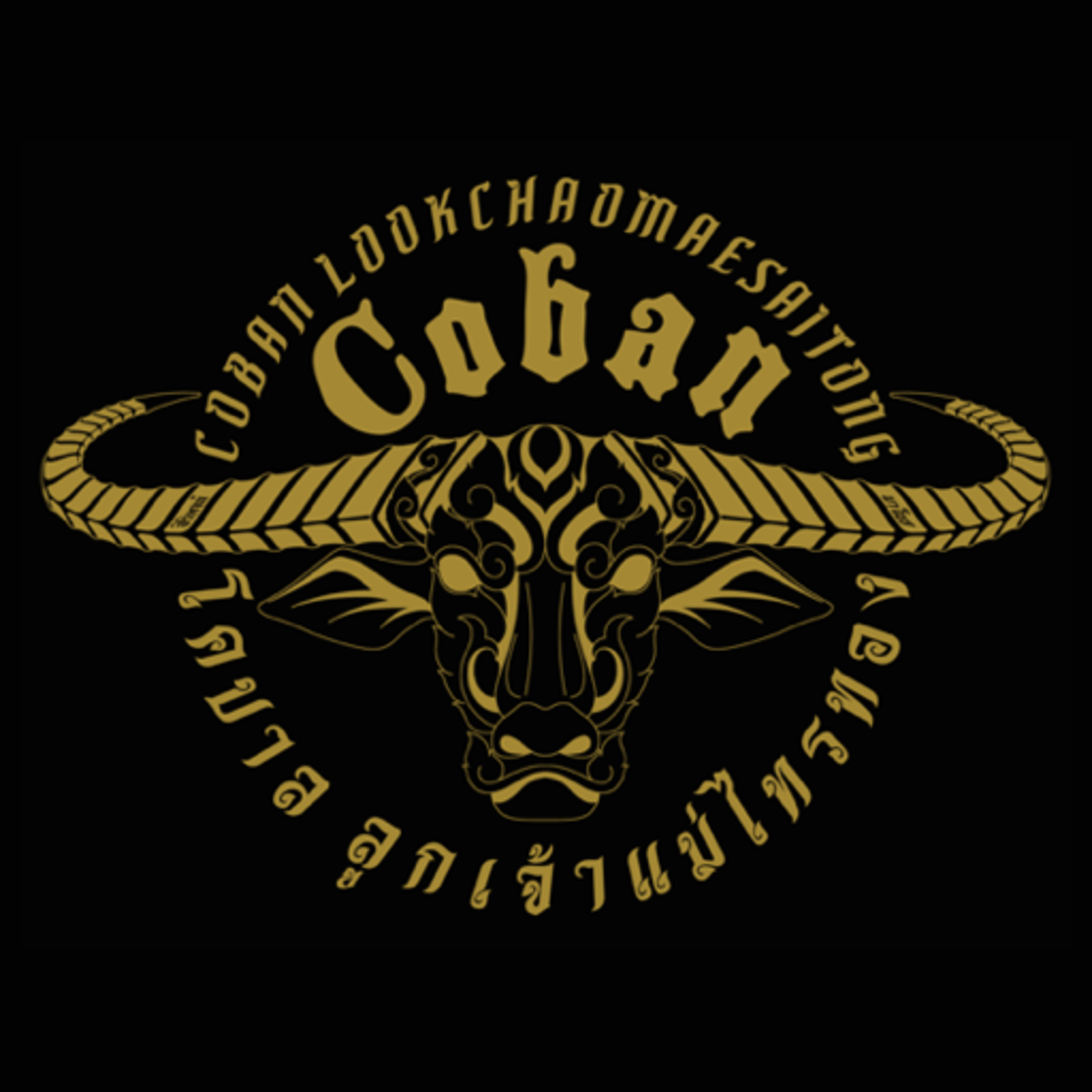 Team Coban icon