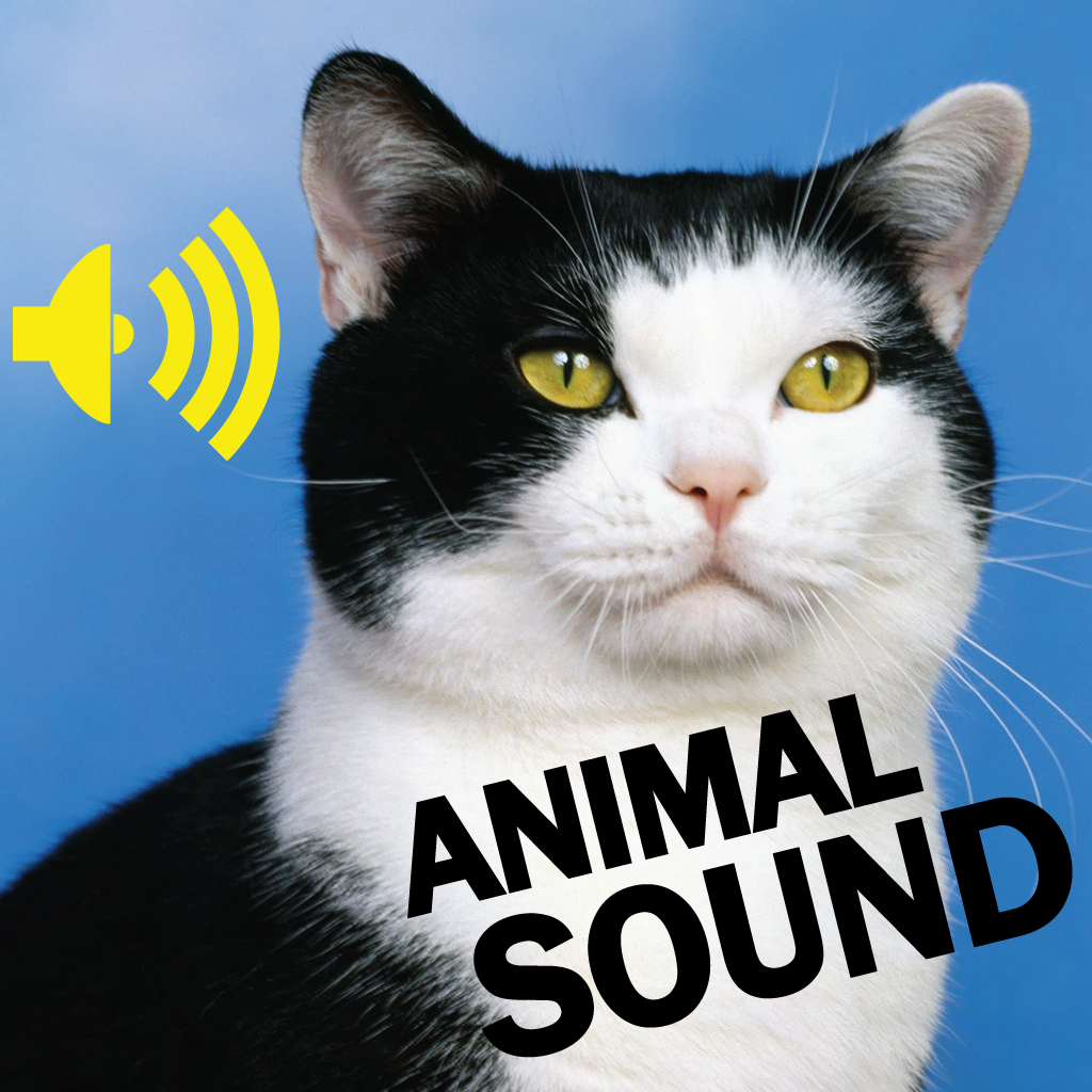 Amazing Animal Sounds Collection By Wei MA