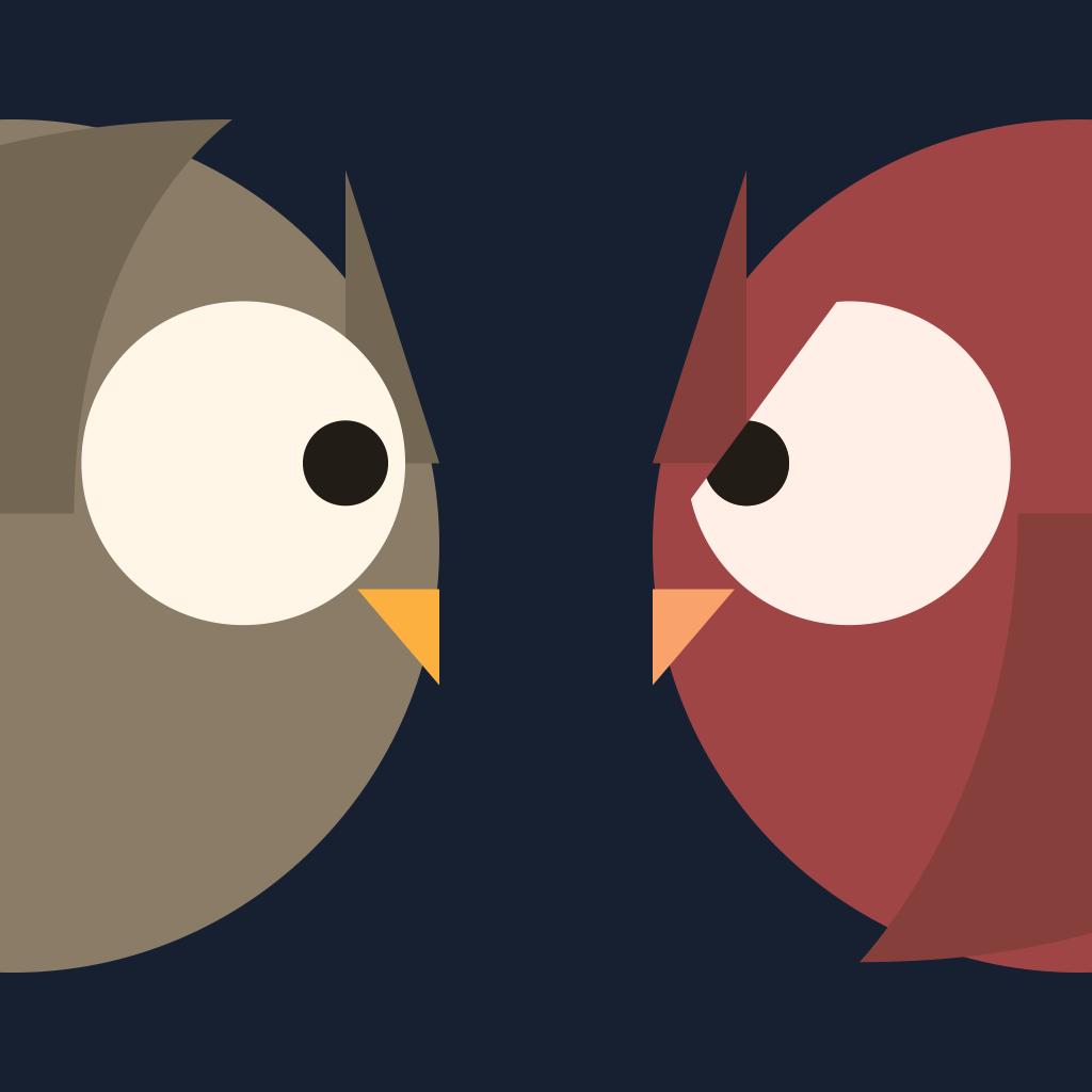 Owl Run - An Owlish Journey