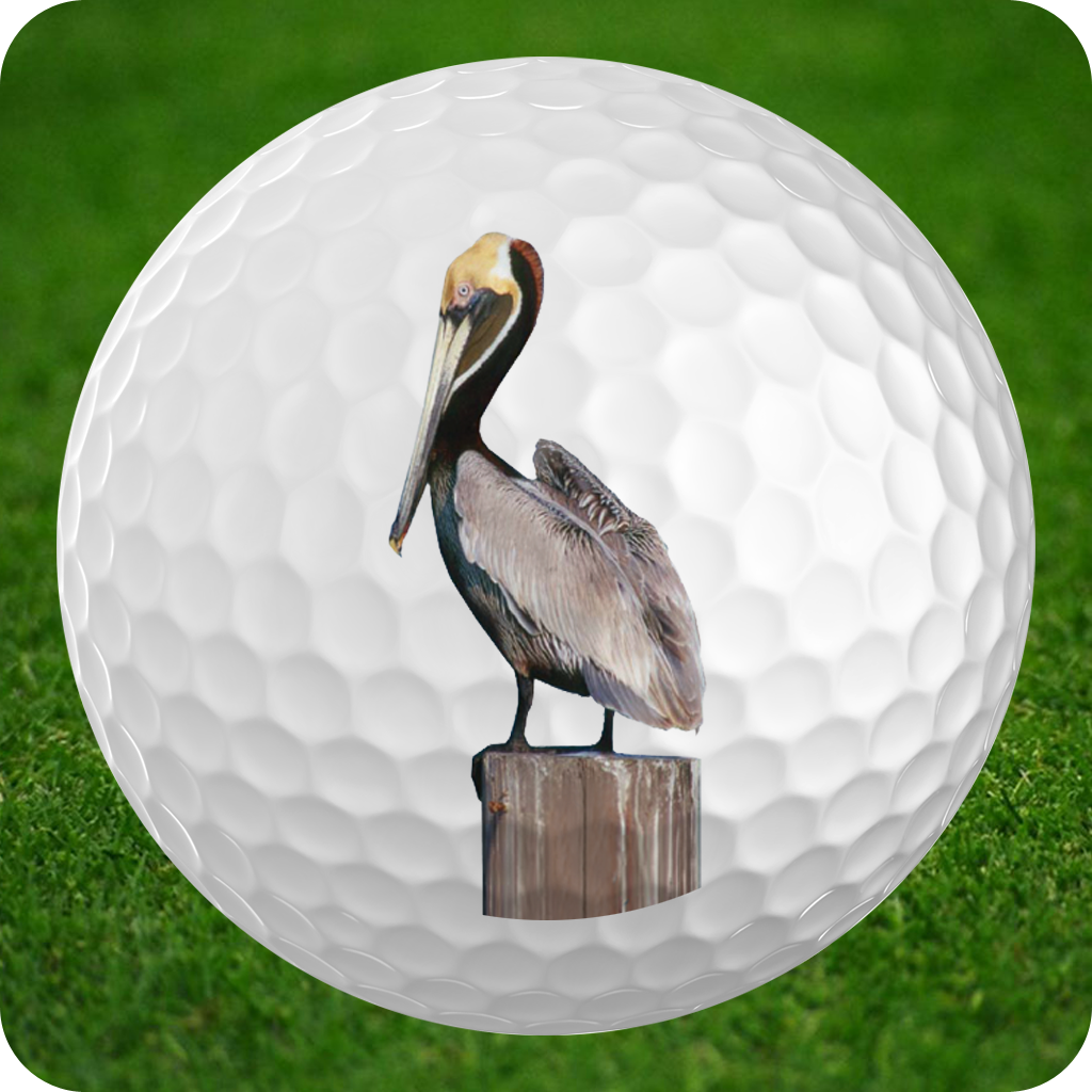 Pelican Bay Golf Course icon