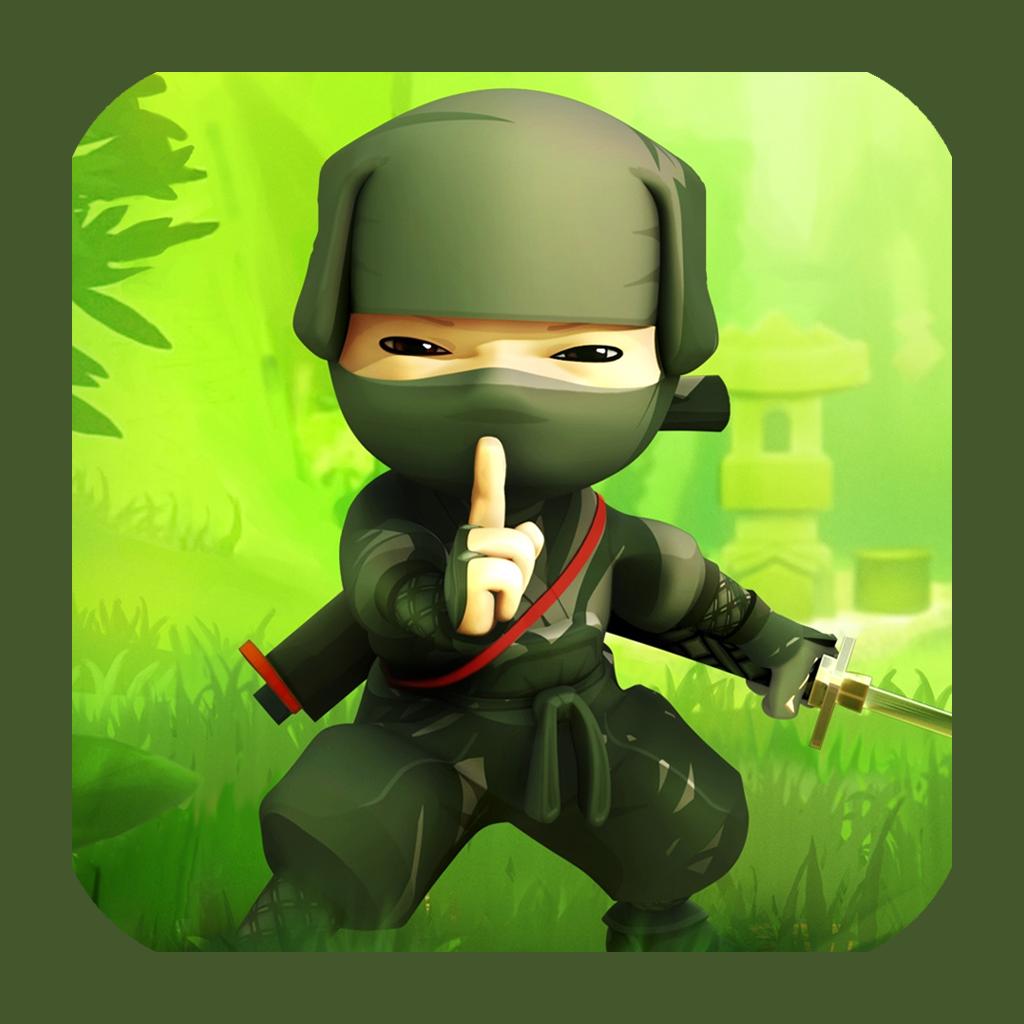 Ninja In Black