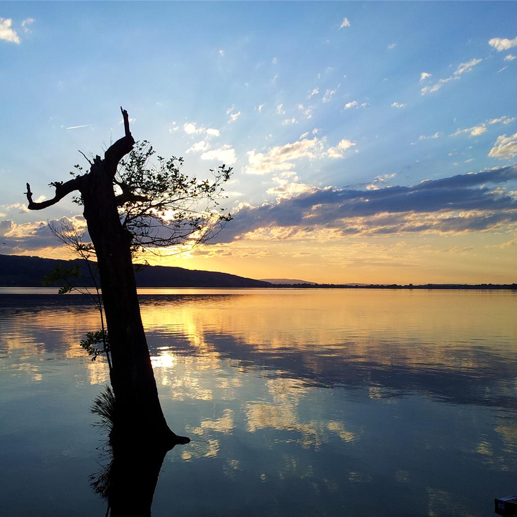 Greifensee - Der See
