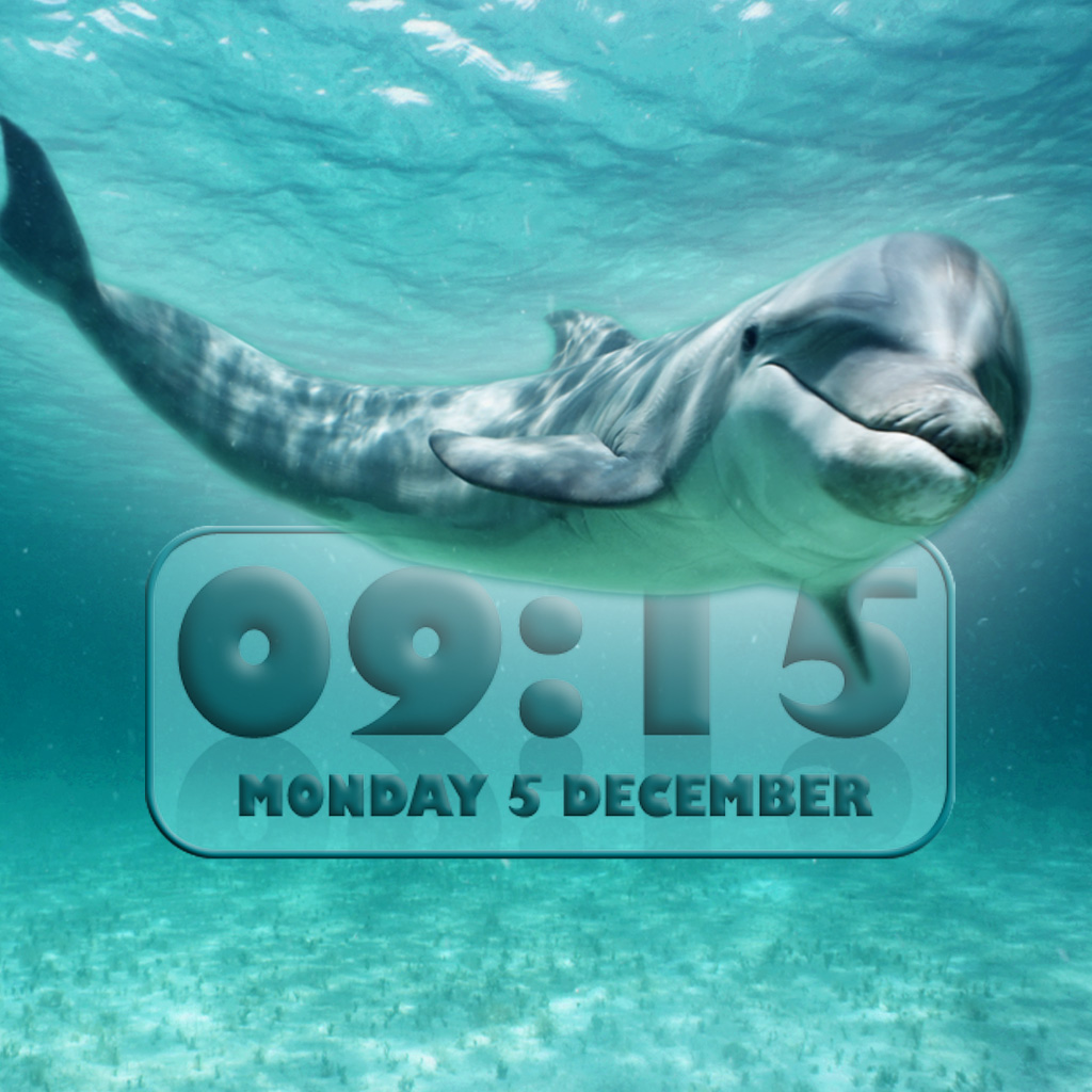 Dolphin Alarm Clock | Explore the app developers, designers