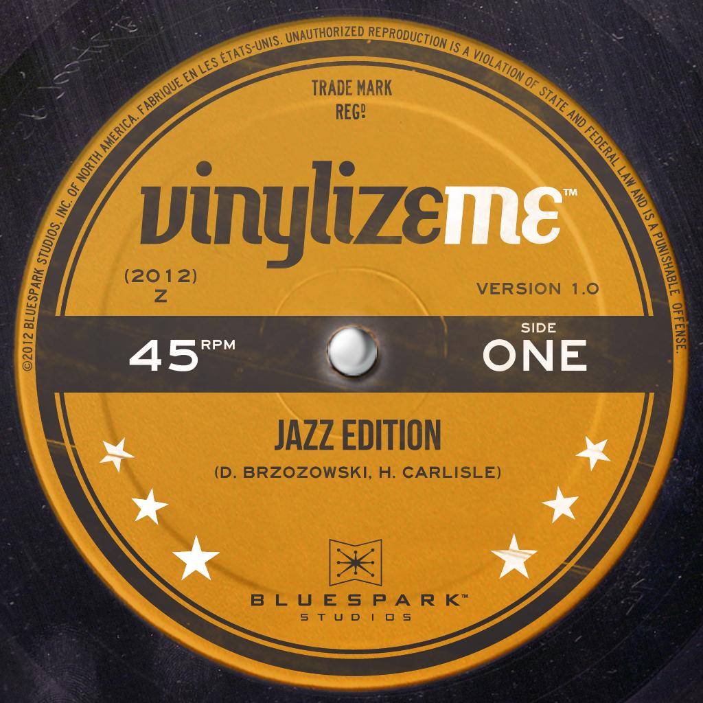VinylizeMe