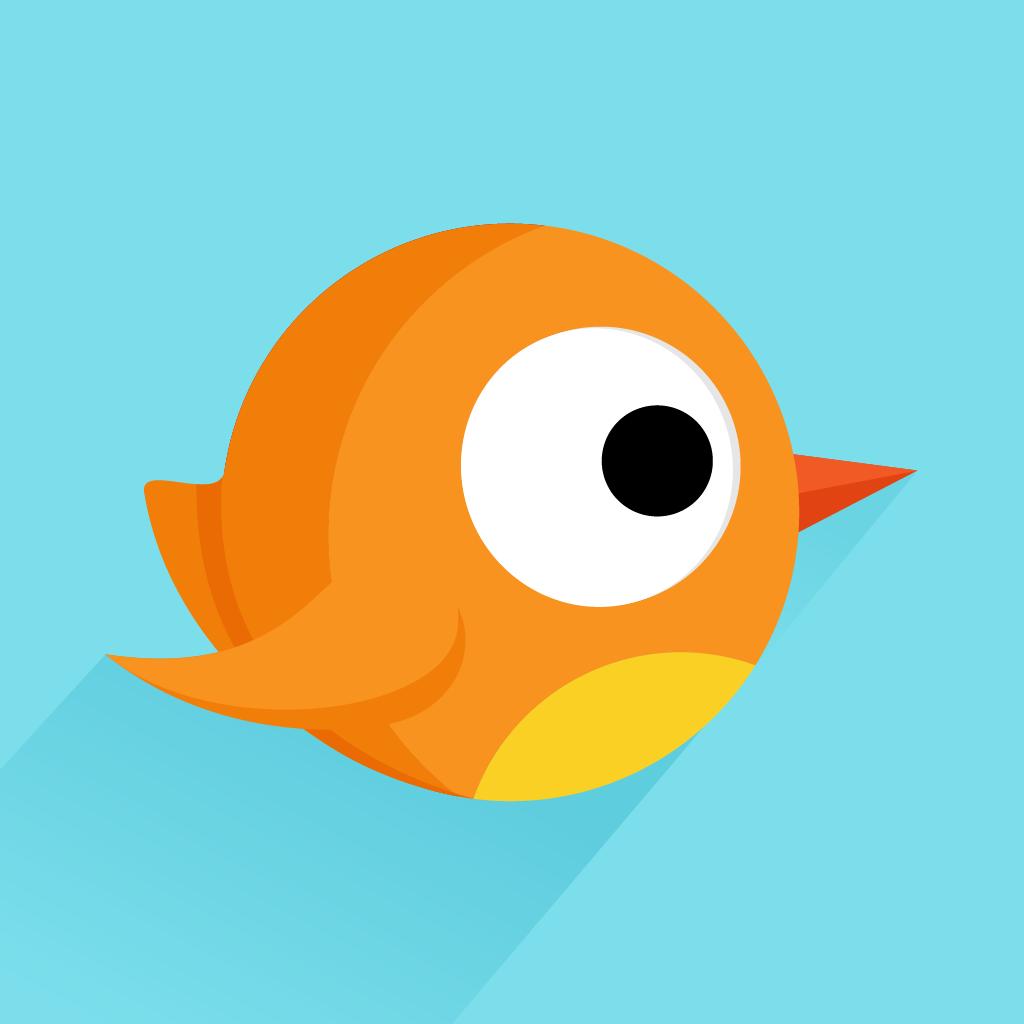 Crazy Boom Bird