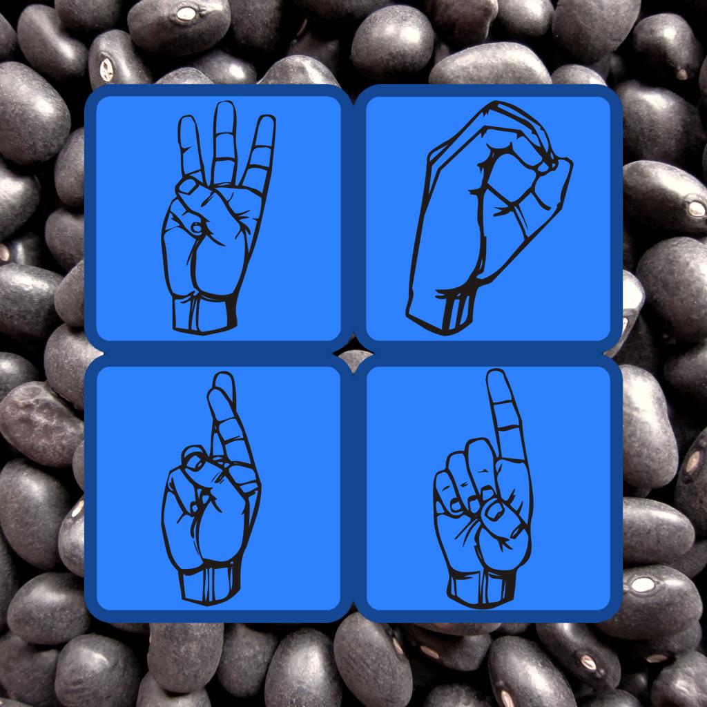 ASL Word Cache