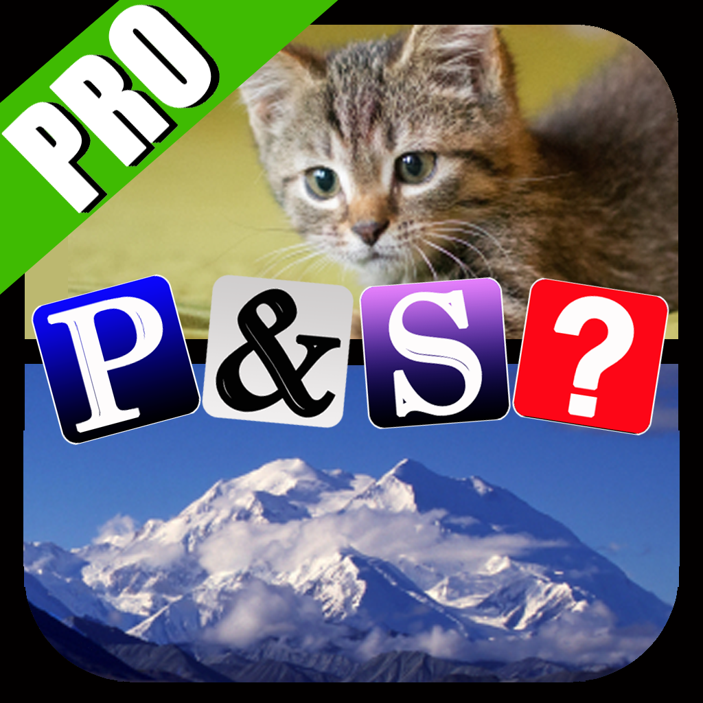 Pics & Synonyms Pro