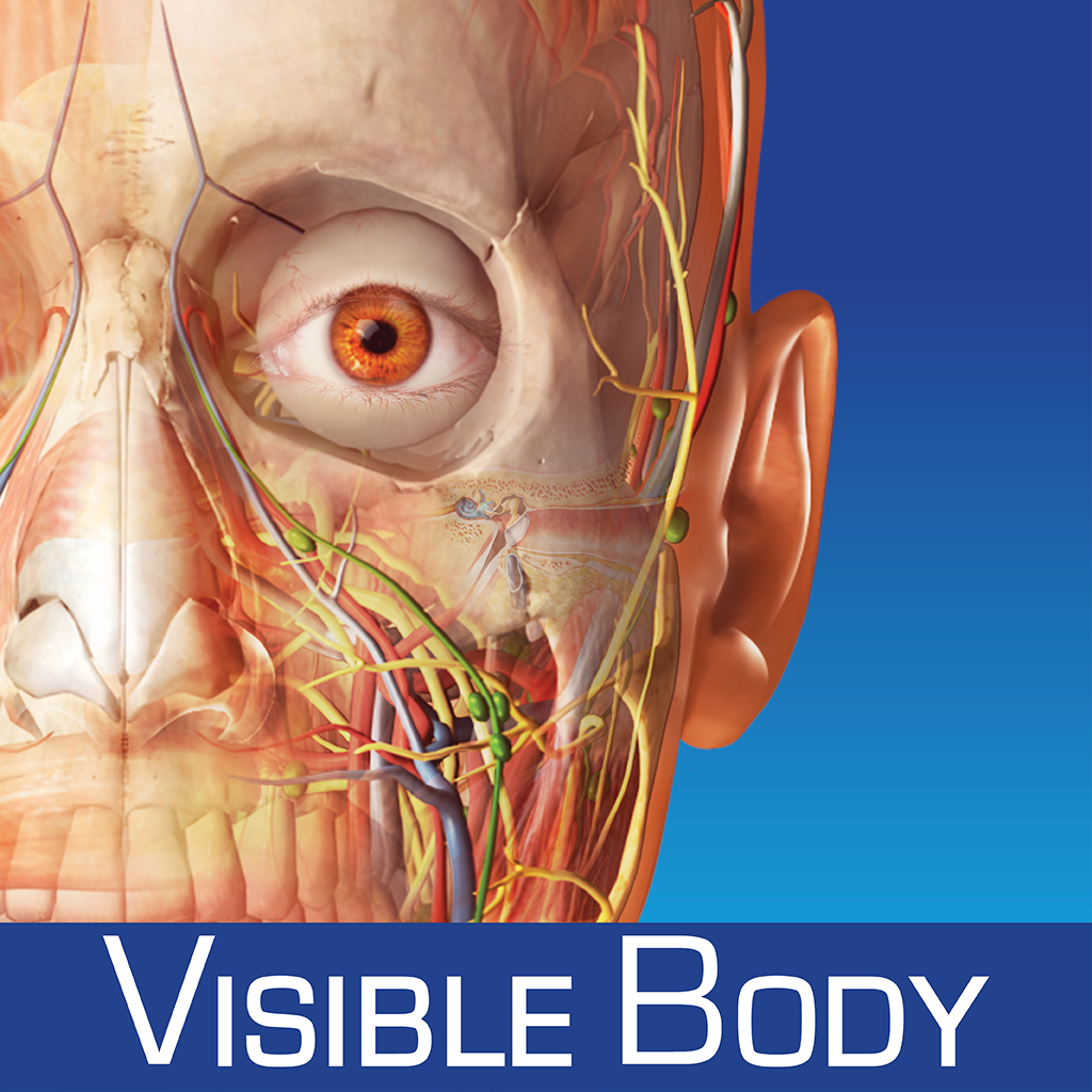 Human Anatomy Atlas SP – Free 3D Anatomical Models of the Human Skeleton and Physiology Animations