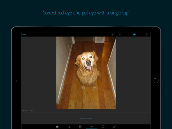 Adobe Photoshop Express: Edit Photos, Make Collage Screenshot